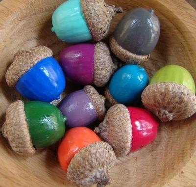 acorn01