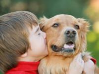 Каждый ребенок должен расти с собакой!