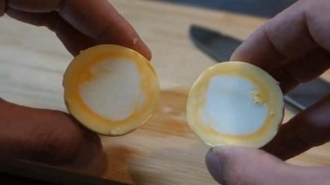 Опыт с яйцом наизнанку