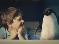 История о дружбе мальчика и пингвина. Так умеют дружить только дети!