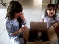Каким подаркам больше всего рады наши дети?