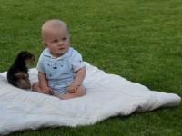 Щенок с любовью напал на малыша