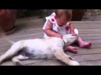 Встреча щенка с малышкой