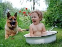 Какую породу собак выбрать для ребенка?