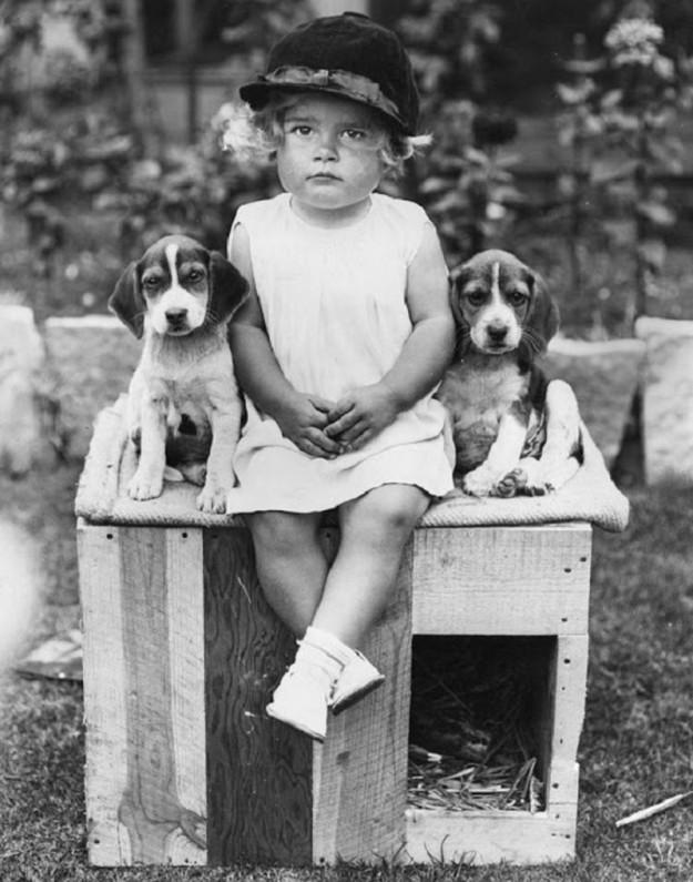 Девочка с щенками, 1934 год