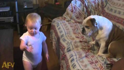 Малышка отругала пса. Никому не даст от рук отбиться!