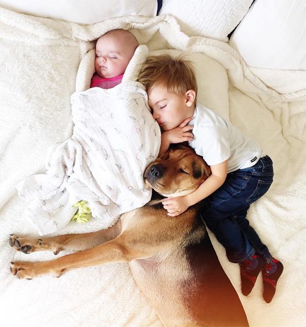 дети спят с ссобакой