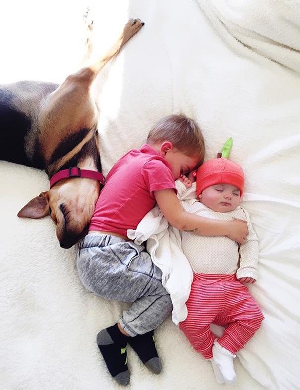 спящее трио-тео-бо-и-эвви
