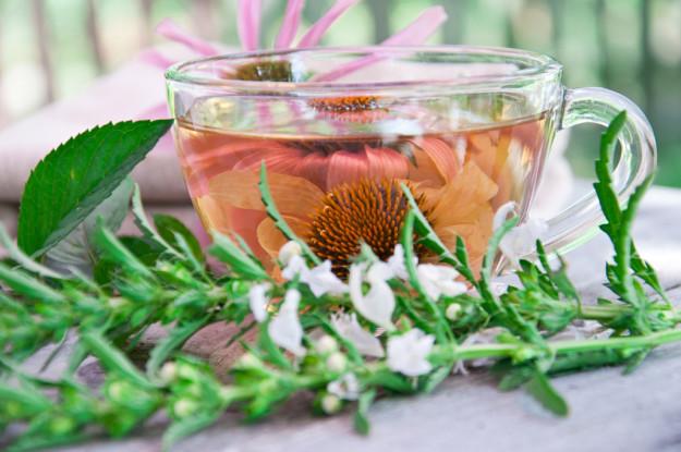 Чай из сушеных листьев эхинацеи
