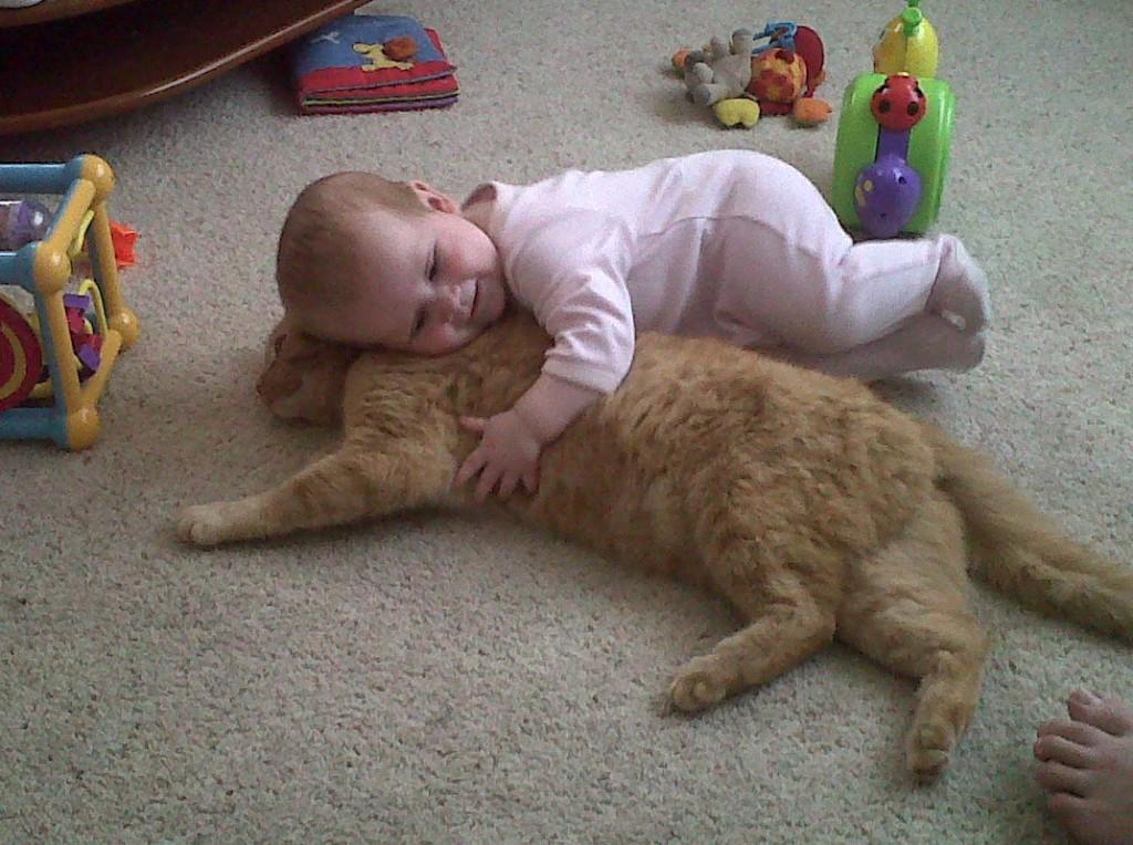 в обнимку с котом