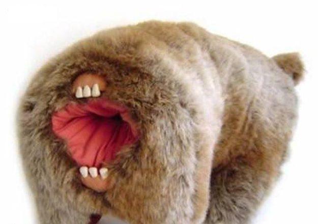 Мишка с зубами из попы