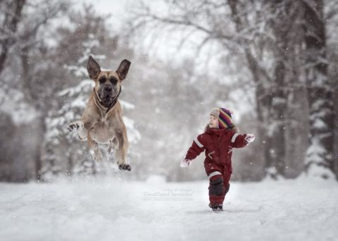 Трогательный фотопроект о маленьких детях и их друзьях – больших собаках