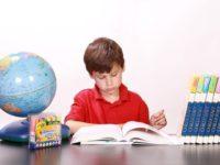 Семейное образование – благо или самодурство?