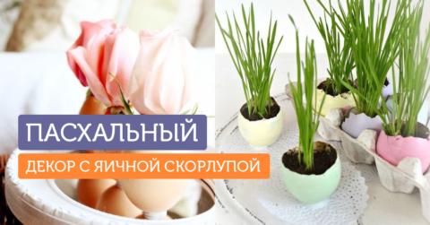 10 идей для пасхального декора с яичной скорлупой