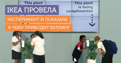 IKEA на примере двух растений показала, к чему приводит школьная травля