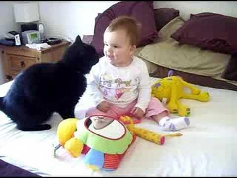 Дружба ласкового кота и малыша. Добрейшее видео