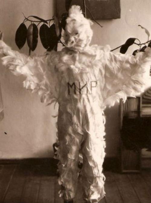 Костюм голубя своими руками фото