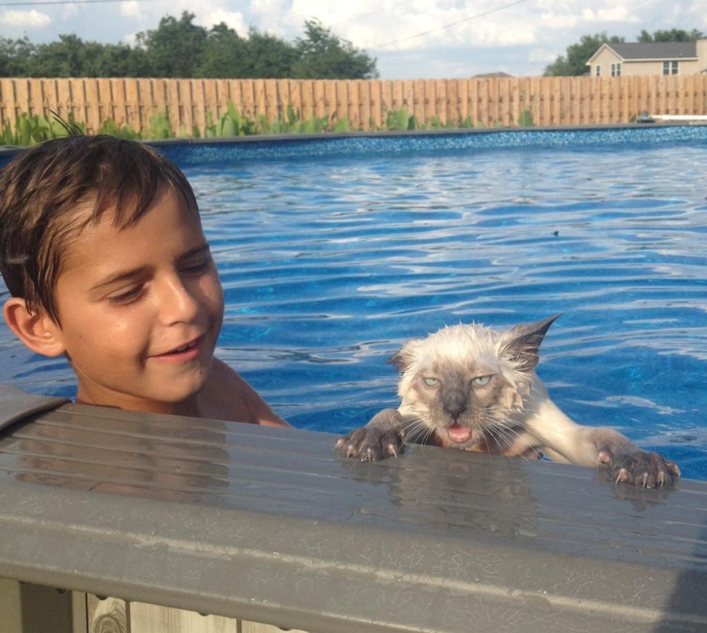 котик и мальчик