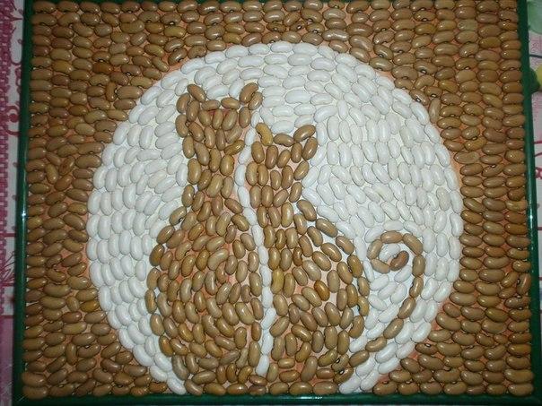 коты из фасоли