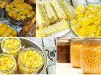 Консервируем кукурузу правильно. Инструкция по заготовке кукурузы на зиму