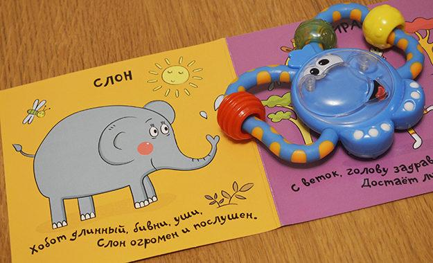 elephant_foto