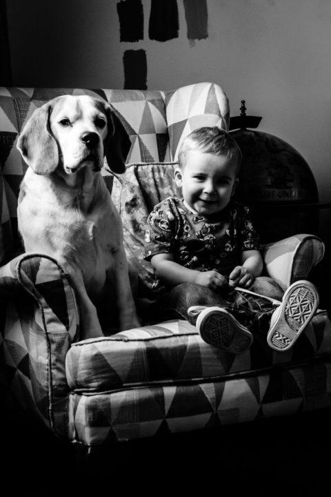 Каждый месяц уже 2 года мама фотографирует сына и бигля в одном и том же кресле, чтобы наблюдать за изменениями