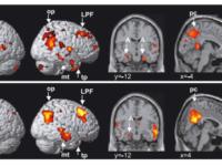 Поразительные факты о том, как рождение ребенка влияет на мозг женщины